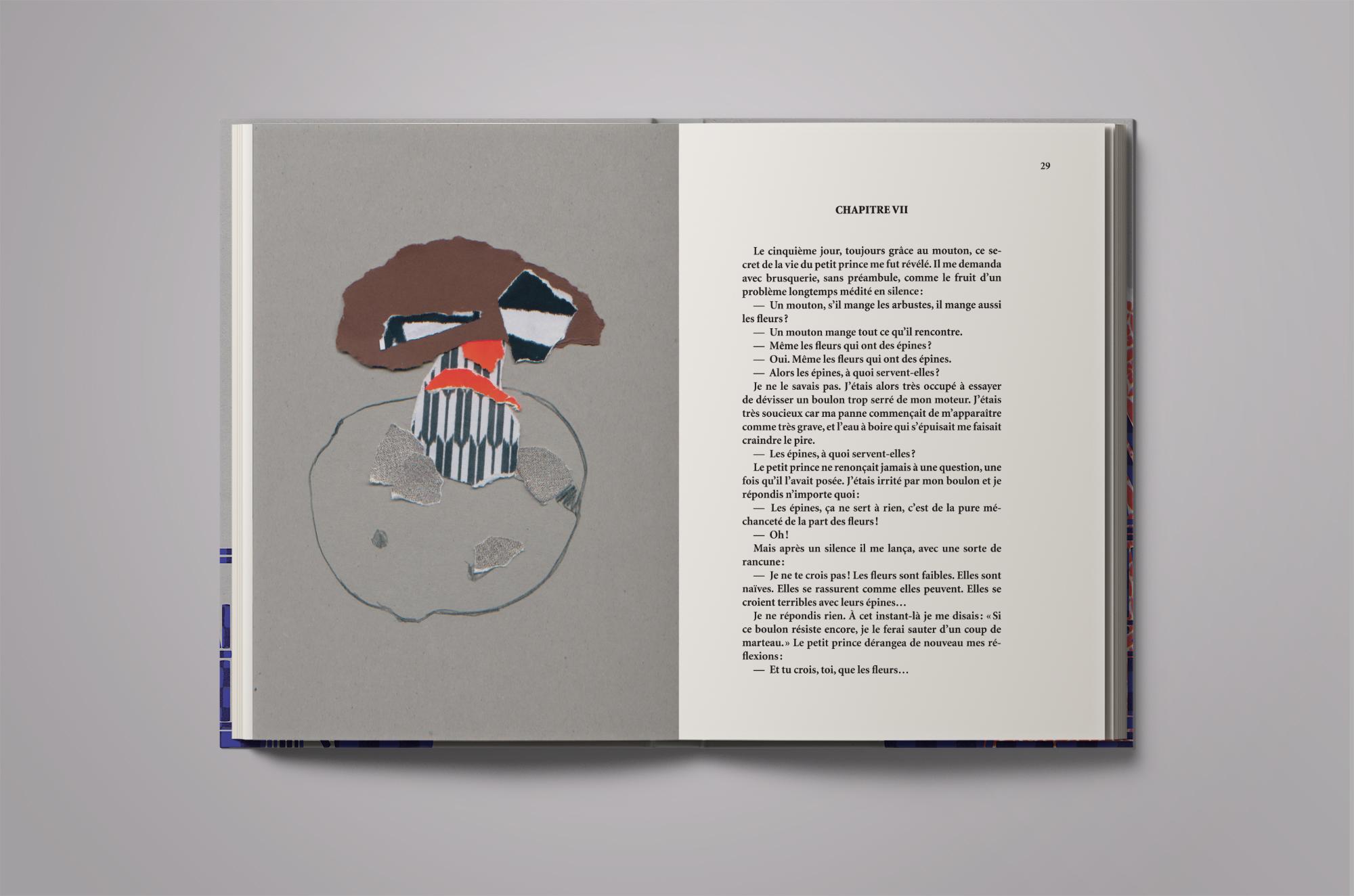 edition-livre-lepetitprince8