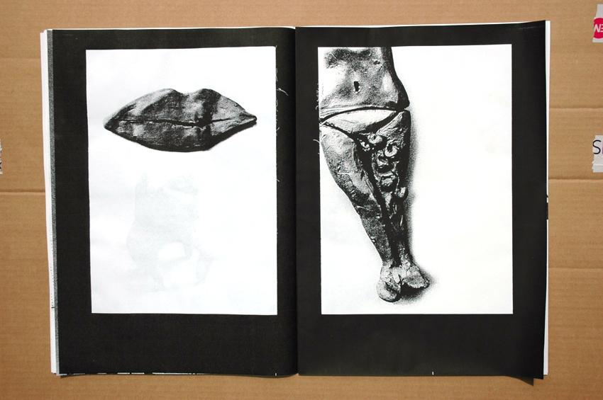 illustration-journal-lerire20